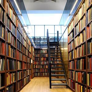 Библиотеки Ишеевки